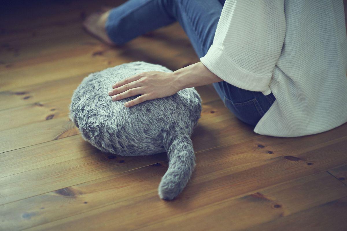 หมดทุกปัญหาของคนอยากมีสัตว์เลี้ยงด้วย Qoobo !